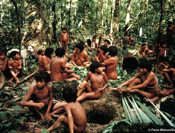 50 anni di Missione a Catrimani tra gli Yanomami