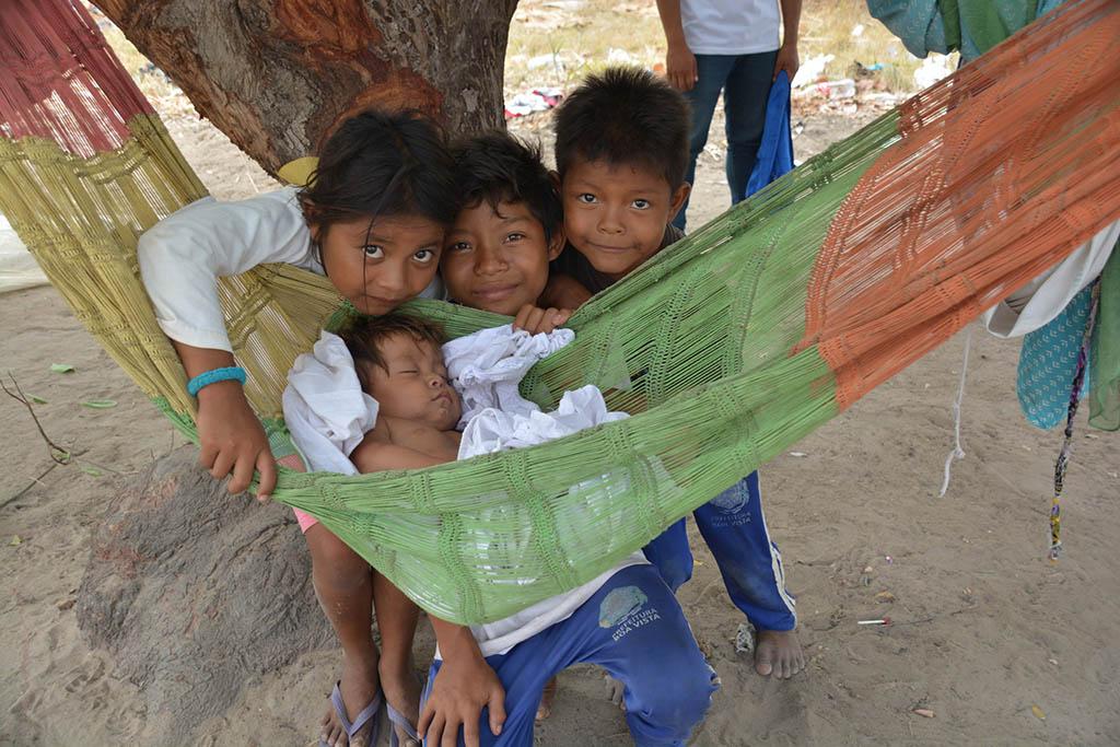 18 INMD3 02 Criancas warao fora do abrigo buscam protecao em uma arvore