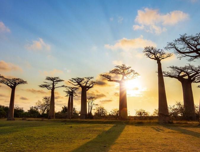 A crise ecológica e espiritual: Um olhar da África